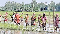 Ethnic communities of Sirajganj undermined...