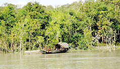 Fishermen decry Sundarbans fishing ban