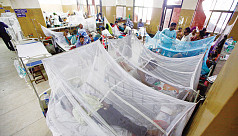 Number of fresh dengue cases rises again