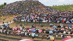 UNHCR: Rohingyas should not be restricted...
