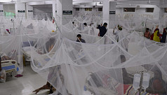 DGHS: 198 more hospitalized for dengue in 24hrs