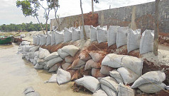 River erosion strikes Rajbari, Shariatpur