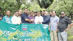 Chevron organizes tree plantation drives in Sylhet