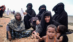 UN expert to Suu Kyi: Feel the sufferings of Rohingyas