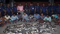 48 punished for defying ilish ban in...