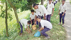 Students plant palm trees to reduce lightning strike casualties