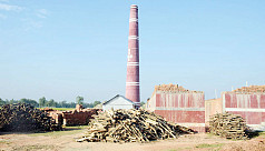Illegal brick kilns cause economic,...