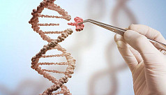 In first, US doctors try CRISPR gene editing for cancer treatment