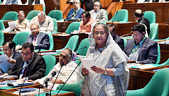 PM blames Ziaur Rahman for creating Rohingya crisis