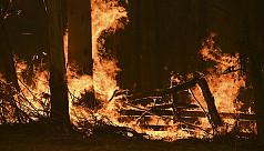 Bushfires conditions worsen in east...