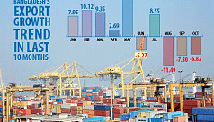 Export earnings fall 17.19% in...