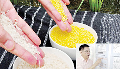 The Philippines approves Golden Rice...