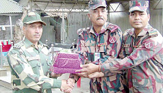 BGB exchanges greetings with BSF on Victory Day