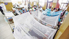 Dengue on the rise with daily average of 18 new cases in November