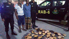 Two smugglers arrested with 44 turtles in Khulna