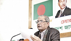 Fakhrul: Mujib Borsho won't be successful...
