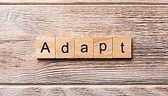 How much are we really adapting?