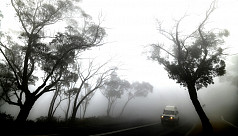 Rain offers hope in Australian bushfire...