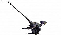 'Dancing dragon' shows feathers grew...