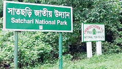 Satchari National Park: Tourist spot...