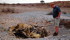 Years of drought threaten South Africa's...