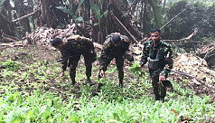 More poppy fields destroyed in Bandarban