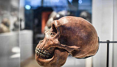 'Mysterious' ancient human genome detected...