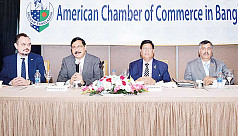 AmCham favours enhanced cooperation with US for more FDI