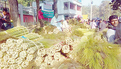 Rangamati flower brooms fetch foreign...