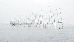 Illegal fishing traps depleting fish...