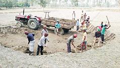Brick kilns exhaust farmlands of topsoil in Panchagarh