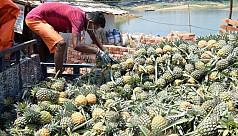 Coronavirus: Fall in price hits Rangamati...