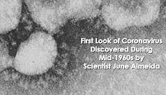 The woman who discovered the first coronavirus...