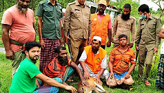Deer rescued from Bagerhat released...