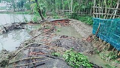 Cyclone Amphan: 1,76,007 hectare agricultural land affected