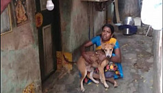 Woman in Chennai eats once a day, and feeds the rest to her 13 dogs
