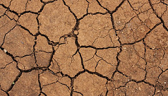 Agriculture and climate change: A dangerous...