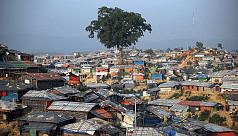 CMP: Do not rent houses to Rohingyas