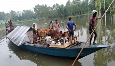 150,000 people marooned in Kurigram as flood situation worsens