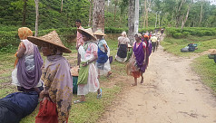 Tea workers pay leaders to claim annual...