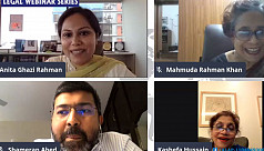 ALAP webinar discusses role of NGOs...