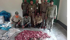 Deer meat seized in Bagerhat