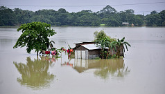 2.2m affected by floods in India's Assam as water inundates Kaziranga Park