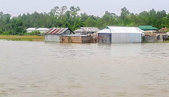 Tangail devastated in the aftermath of floods