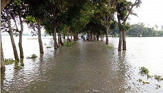 Flood situation yet to improve in Jamalpur, Tangail