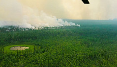 Arctic wildfires emit more CO2 in two months than whole of 2019