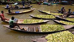 Floating Guava Market of