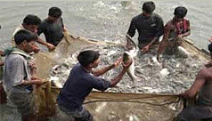 Fish farming becomes boon for many in...
