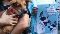 Animal lovers protest DSCC move to relocate stray dogs