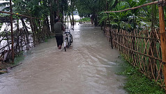 Fresh areas flooded as Nilphamari sees ceaseless rain
